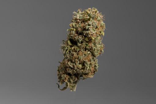 Cannatonic CBD indoor Swees weed